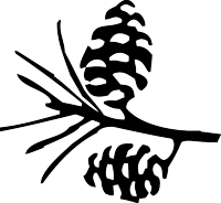 Laguna Mountain Lodge Pinecone Logo