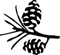 Laguna Mountain Lodge Pinecone Logo